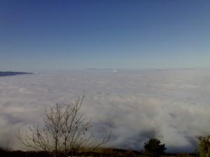 Panoramica nebbia