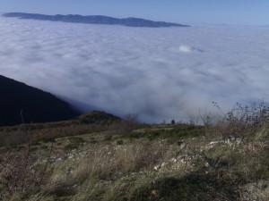 Panoramica nebbia (7)